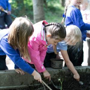 Holly Primary School 112